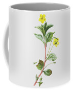 Wood Loosestrife Coffee Mug