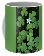 Wood Sorrel Flower Coffee Mug