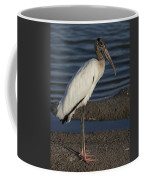Wood Stork In The Final Light Of Day Coffee Mug