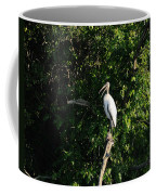 Wood Stork-out On A Limb Coffee Mug