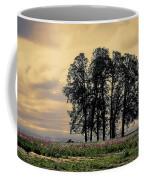 Woodburn Oregon - Sky Lights Coffee Mug