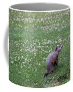 Woodchuck Coffee Mug