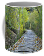 Wooden Path Coffee Mug