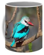 Woodland Kingfisher Halcyon Coffee Mug