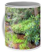 Woodland Stream Forest Interior Coffee Mug