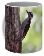 Woodpecker In New Mexico Coffee Mug