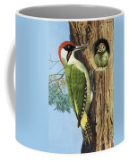 Woodpecker Coffee Mug by RB Davis
