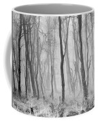Woods In Mist, Stagshaw Common Coffee Mug