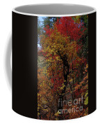 Woods In Oak Creek Canyon, Arizona Coffee Mug