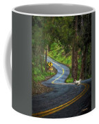 Woods Road 1 - Summer Coffee Mug
