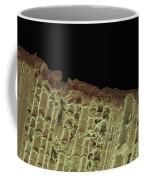 Woodwind Reed, Sem Coffee Mug