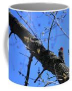 Woody Woodpecker Coffee Mug