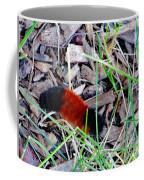 Wooly Bear 1 Coffee Mug