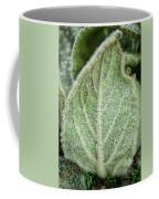 Wooly Mules Ear Coffee Mug