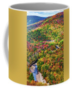 Worlds End State Park Lookout 3 - Paint Coffee Mug