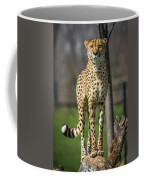 World's Fastest Land Animal Coffee Mug