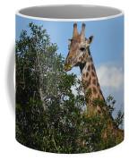 World's Tallest Mammal Coffee Mug