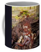 Worm Snake Coffee Mug