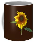 Worshipping The Sun Coffee Mug