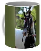 Wr The Big Son Of Bok Coffee Mug