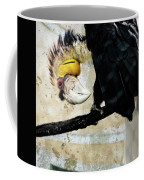 Wreathed Hornbill Perching Against Vintage Concrete Wall Backgro Coffee Mug