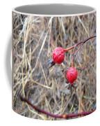Wrinkled Wild Rose Hips Coffee Mug