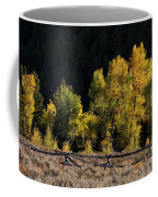 Wyoming Autumn Color One Coffee Mug