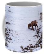 Wyoming Big Horn Coffee Mug