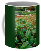 Yams Farm In Azores Coffee Mug