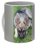 Yard Elf Coffee Mug