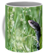 Yard Snake Coffee Mug