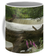 Yates Dam Coffee Mug