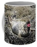 Yawning Harbor Seal - Oregon Coast Coffee Mug