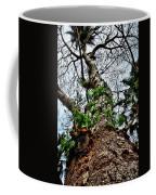 Ye Ole Tree At Chichen Itza Coffee Mug