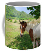 Yearling Colt In The Pasture Coffee Mug