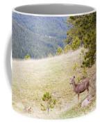Yearling Mule Deer In The Pike National Forest Coffee Mug