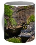 Yellow And Black Dart Frog Coffee Mug