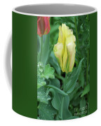 Yellow And Green Striped Tulip Flower Bud Coffee Mug