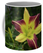 Yellow And Marron Flowering Lily In A Garden Coffee Mug