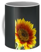 Yellow And Orange Gerber Coffee Mug
