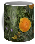 Yellow And Orange Poppy Coffee Mug