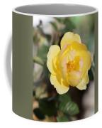 Yellow And Pink Tipped Rose Coffee Mug