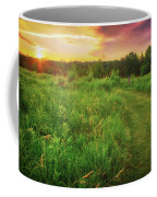 Retzer Nature Center - Yellow And Purple Summer Sunset  Coffee Mug