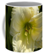 Yellow And White Daylily Coffee Mug