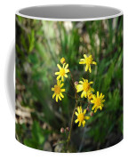 Yellow Bouquet On The Trail Coffee Mug