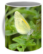 Yellow Butterfly Coffee Mug