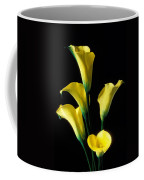 Yellow Calla Lilies  Coffee Mug by Garry Gay