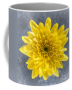 Yellow Chrysanthemum Flower Coffee Mug