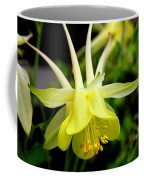 Yellow Columbine 1 Coffee Mug