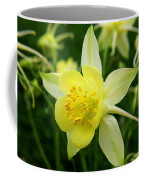 Yellow Columbine 3 Coffee Mug